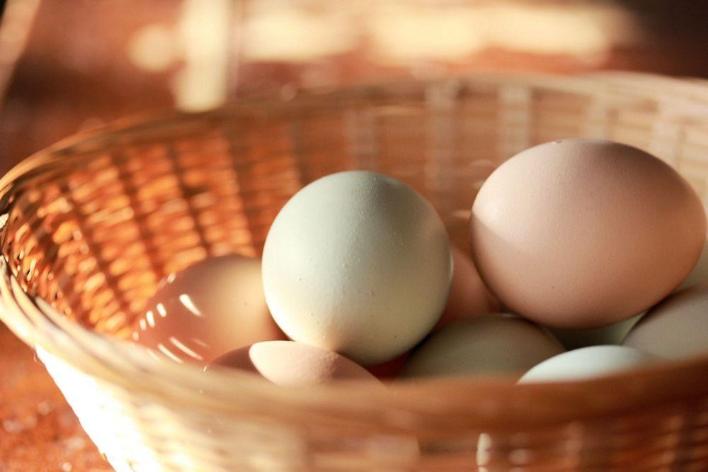eggsbasket